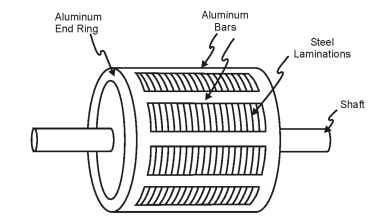 Squirrel cage induction motor rotor