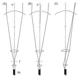 """Afocal"" apposition in butterfly eyes. (A and B) Although each ommatidium acts independently, like an apposition eye, the optical elements function as telescopes with an internal image, as in superposition eyes (Fig. 13) . The wide beam of light reaching the cornea is reduced to ""fit"" the rhabdom (see text). (C) A consequence of this arrangement is that the rhabdom tip is imaged onto the cornea. I, image plane; Rh, rhabdom."