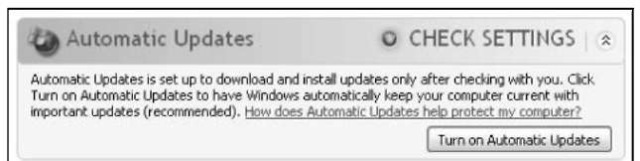 The only option available: Turn on Automatic Updates.