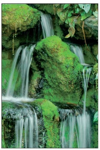 For misty waterfalls, use a slow shutter speed and a tripod.