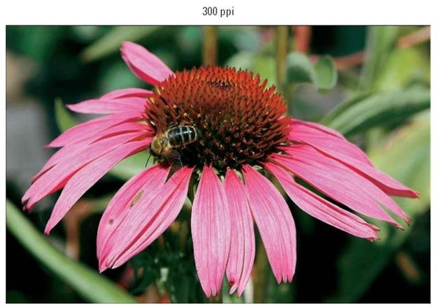 A high-quality print depends on a high-resolution original.