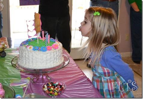 Sarah's party 034
