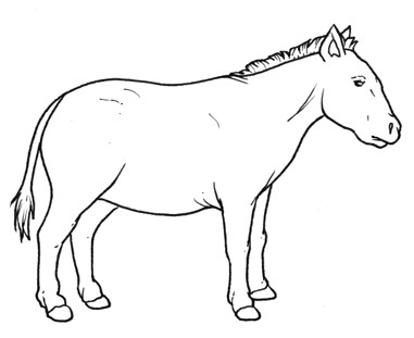 prehistory Horse free coloring pages