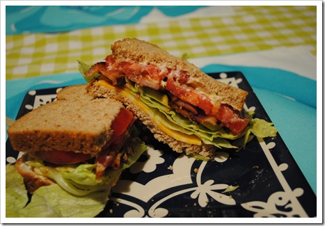 bacon 2011-03-31 005