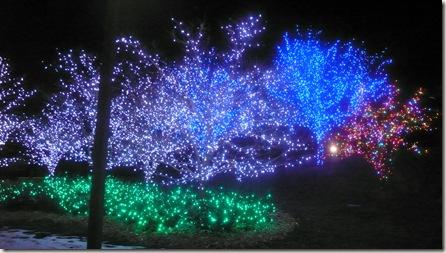 January 2010 115