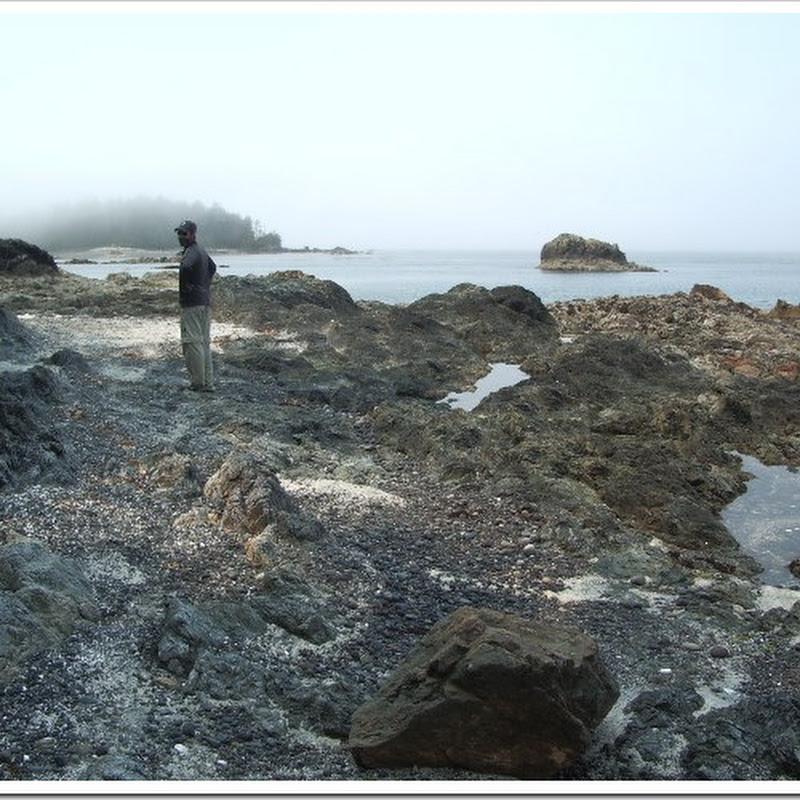 Logbook: Nuchatlitz Marine Park