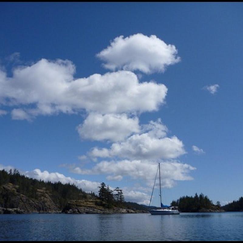 Logbook: Copeland Islands