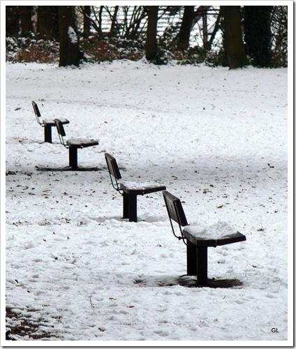 neige 10-1-2010 - montgeon 011-1