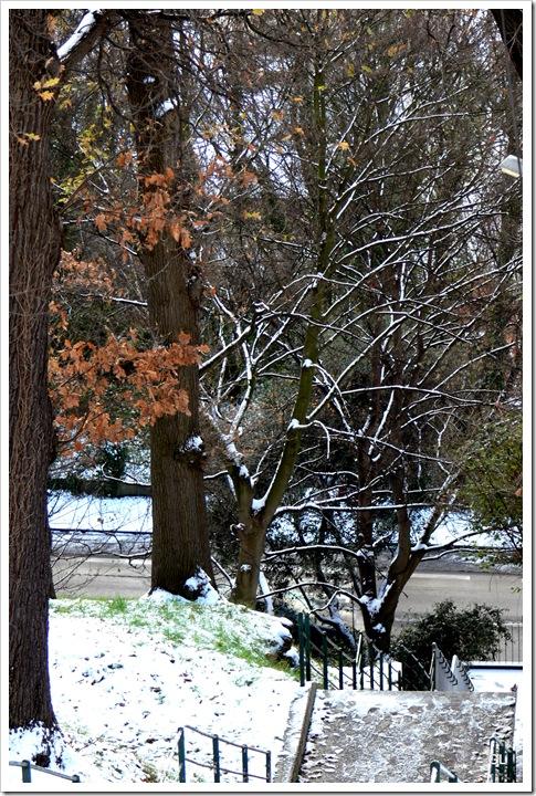 neige dec 2009 010