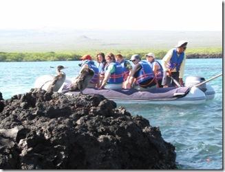 Galapagos 578 [800x600]