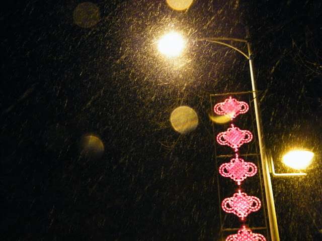 4thheaviest snow in lunar 2010 new year. - 天下予帝birdous天下中帝 - IIDChina╋我帝中华