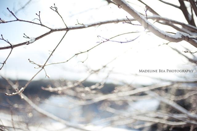 madeline 8