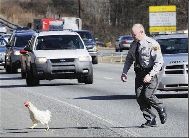 Classico jogo da galinha atravessando a rua