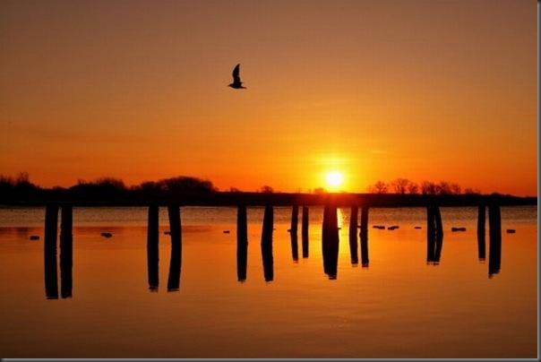 Belos exemplos de reflexões fotograticas (2)