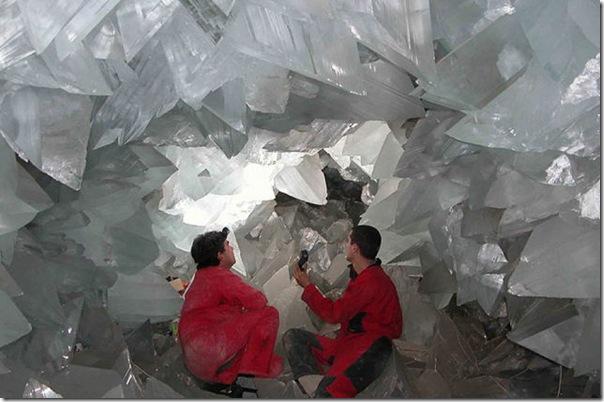 Palacio de Crystal (7)