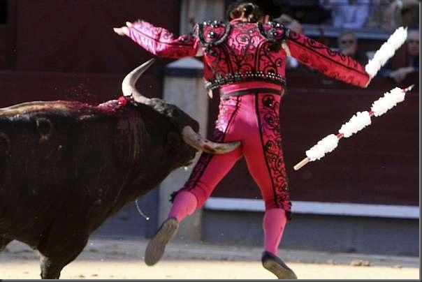 touro (3)