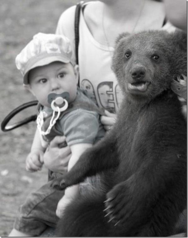 Ursinhos carinhosos (25)