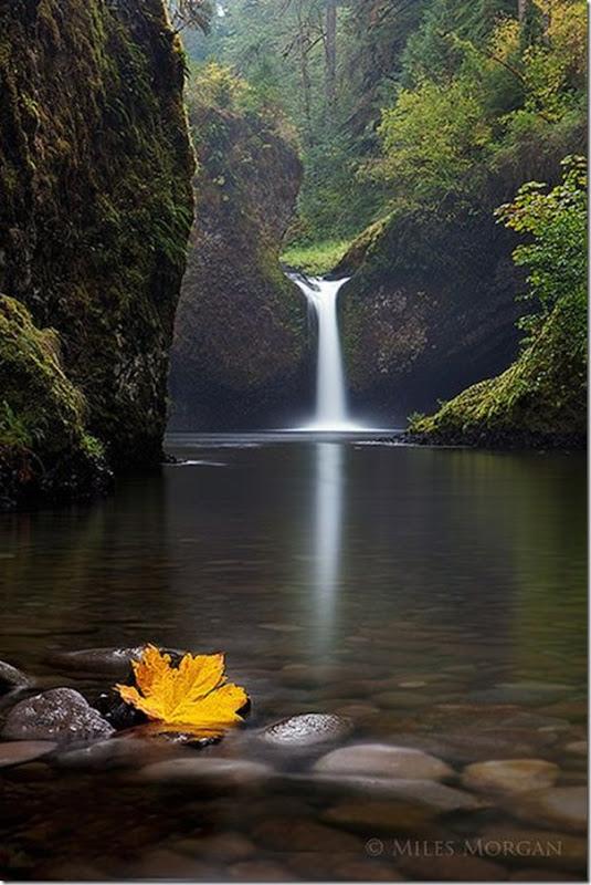 Lindas imagens de cachoeiras (19)