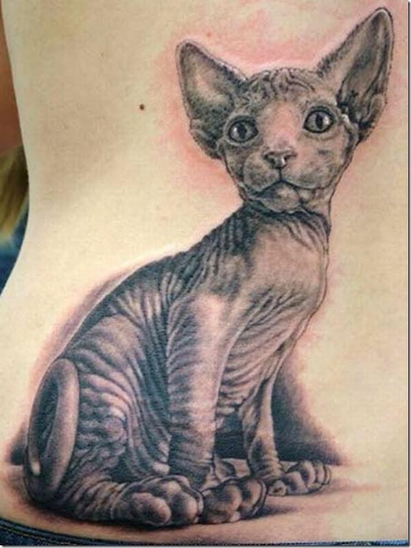 Tatuagem de gatos (10)