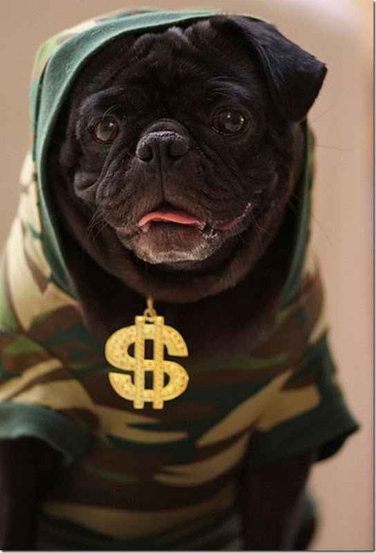 Cães Rappers