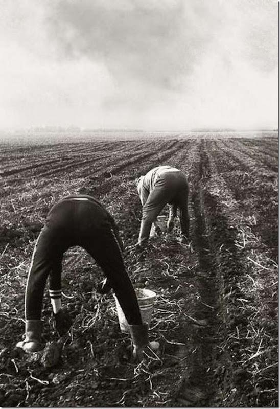 Fotos do passado das pessoas na URSS (9)
