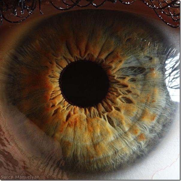 Fotos macro de olhos humanos (15)