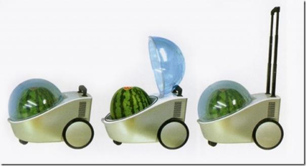 Refrigerador para melancias