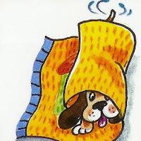 cão_dentro.jpg