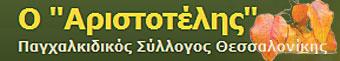 Παγχαλκιδικός Σύλλογος Θεσσαλονίκης - Ο Αριστοτέλης