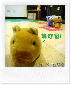 story corner_pig1
