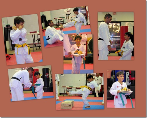Vedic Taekwondo Green Belt Testing