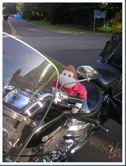 Monkey on a Motorbike 2
