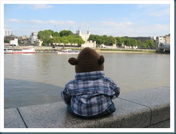 Monkey Looking at Tower London