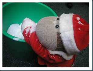 snowmonkey 3