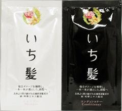 ichikami sample