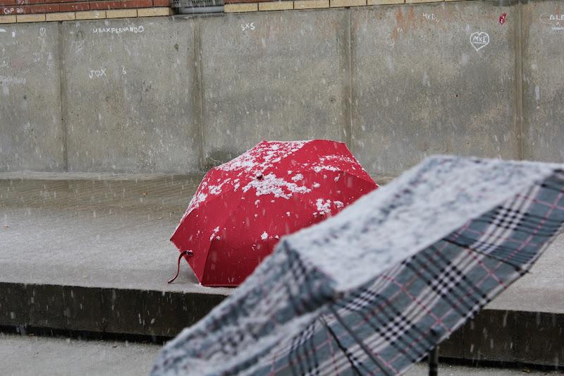 Paraigües nevat