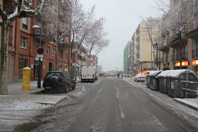 Riera de Martí Pujol nevada I