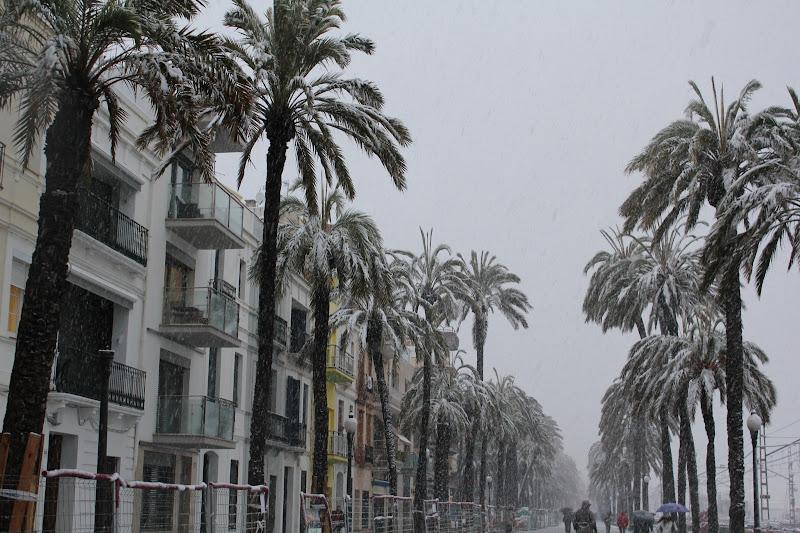 Rambla de Badalona nevada VI