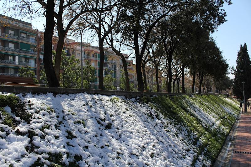 El dia després de la nevada: Parc Europa IV