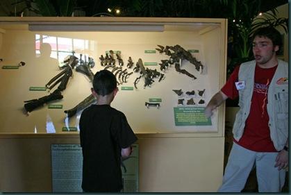 dinosaur_resource_center