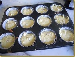 muffin grana 015