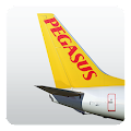 Pegasus Airlines - Cheap Fares
