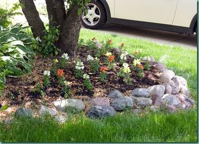 springflowerssnapdragons