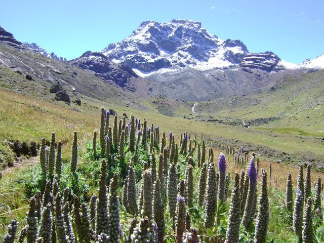 Cerro Shira