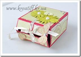 коробочка с бабочками1