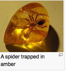 spider trapped in amber.jpg