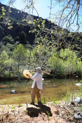 DSC_0035 eileen playing drum on oak creek.jpg