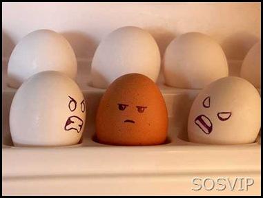 Ovos desenhados (12)