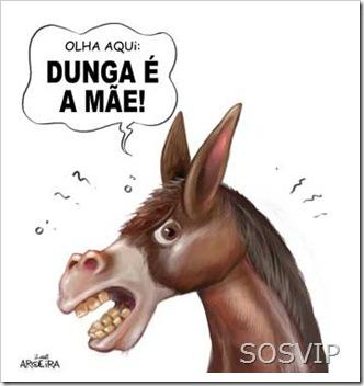 dunga