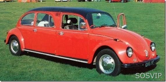 Fusca Volkswagen (2)